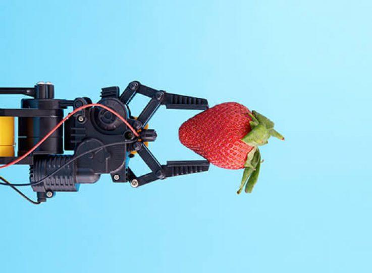Des robots très humains
