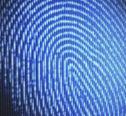 Le casse-tête des identités numériques