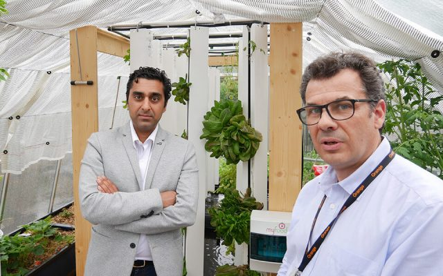 Orange and myfood: connected greenhouse for better growing